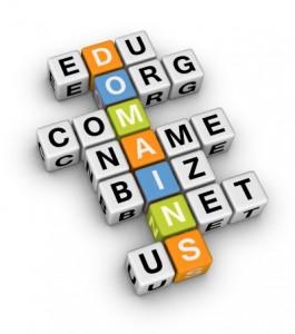 como escoger el nombre de dominio para mi pagina web?
